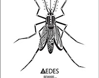 Aedes Aegypti - Blueprint of an Epidemic