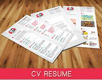 Resume Cv 3 In One