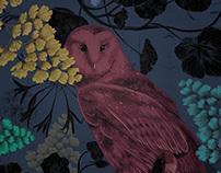 Night Vision   Wallpaper