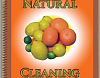 Natural Cleaning Booklet