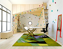 climbing wall home office (2012)