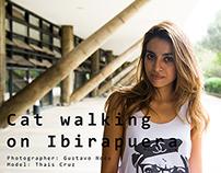 Cat Walking on Ibirapuera