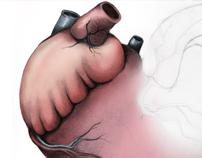 HEART logo concepts