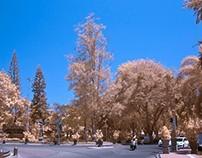 Sloka 45: City of Infrared