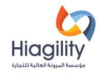 Higility Corporate Identity