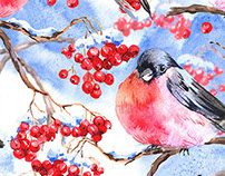 Winter Watercolor with Bullfinches and Rowan Branch