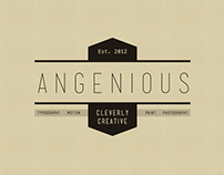 Angenious Reel | March 2014