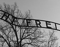 Auschwitz-Birkenau - Cracovia