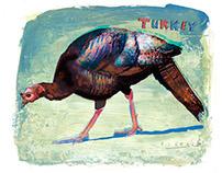 Turkey by Joseph Daniel Fiedler