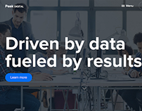 Peak digital agency – Driven by data, fueled by results