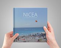 Nice Guide Book