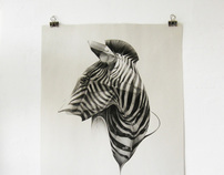COCOON / Limited Edition Exhibition Print /