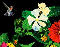 CAPiTA Birds of a Feather 2014-2015