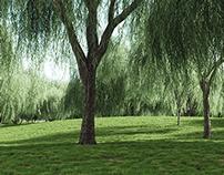 VIZPARK Real Trees - MODO version
