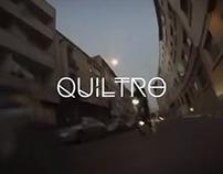 Quiltro