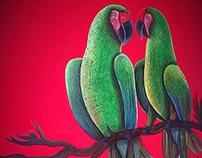 Parede exótica // Exotic wall 2014