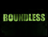 Boundless Exhibit Identity