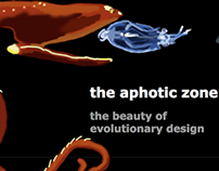 CSS Aphotic Zone: The Beauty of Evolutionary Design