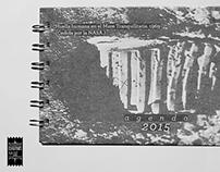 agenda 2015 /// cosmos
