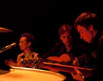 Flamenko in Music