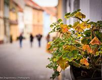 A Day in Brașov