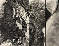 Pencil Drawing Studies