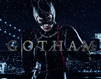 Gotham Project (Prima Parte)