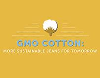 GMO Cotton Infographic
