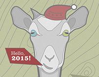 Hello, 2015! Hello, Vega!
