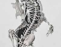 """Cadáveres Habitables (serie) - """"Red Fox"""""""