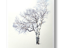 Snow...and the Trees - Artwork Series