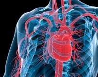 FP7 - Heart-e-Gel