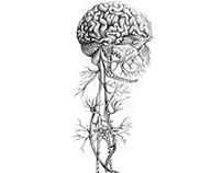Botanical Nerves Illustration