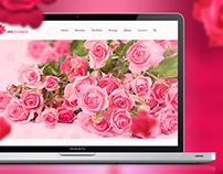 iris flower | website