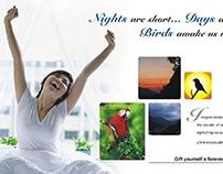 Tourism Print Advertisement