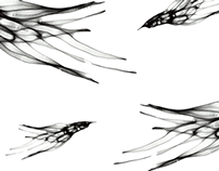 Bird line