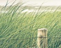 Baltic Sea, Ahrenshoop