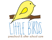Little Birds web, brochure, & visual identity system