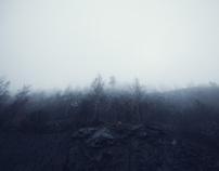 Rock Quarry