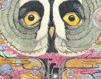Great Grey Owl Watercolour Illustration