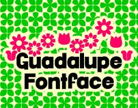 Guadalupe FF