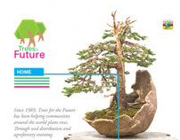 trees for the future website