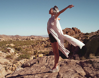 Vagabond SS12 Joshua Tree National Park film