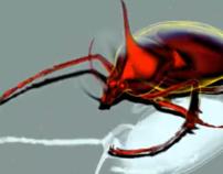 Beetle Walk