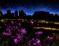 Landscapes  2011-Beginning of 2012