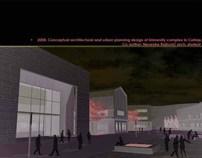 Conceptual design of University complex In Cetinje