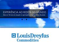 Institucional Website to Louis Droufus