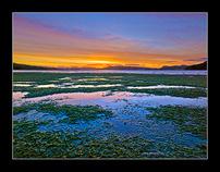 New Zealand, Landscape