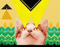 Pushapolooza Poster