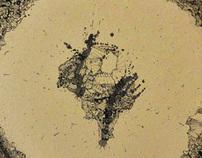 Le galet  2011 d'après Francis Ponge